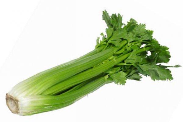 celery-442368c