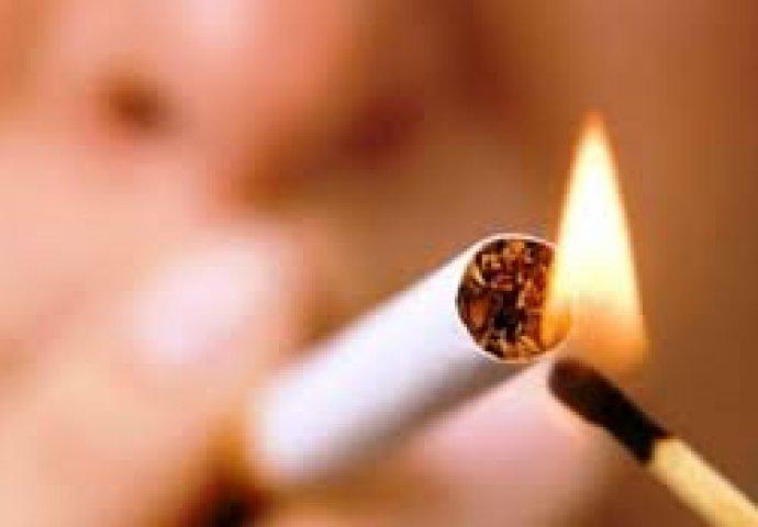 Car pušenje videa