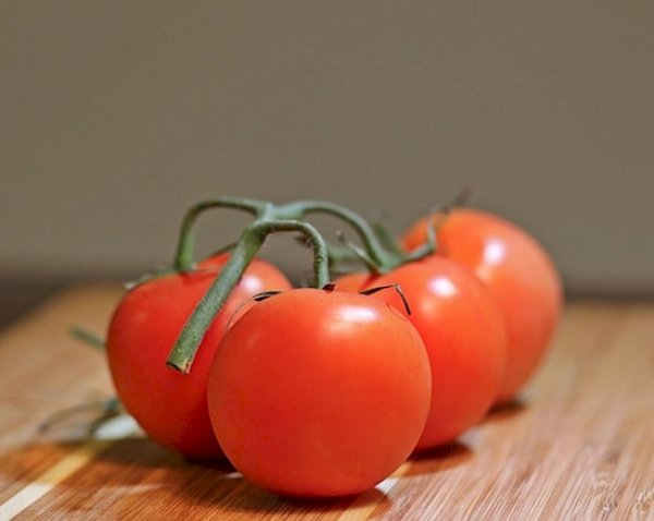 paradajz-3