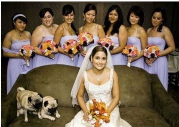vjencanje13