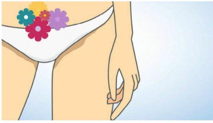 vagina-bakterija