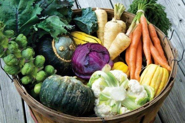 enterijer-dizajn-basdta-povrce-12