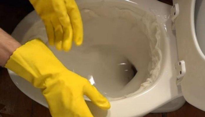 wc-skoljka