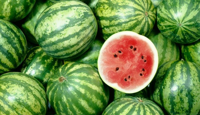 1140-six-things-about-watermelon-new-promo-imgcache-rev7cfcba07fb26c5f63ccb95ec58189429-web-945-544