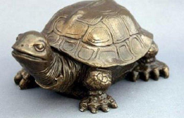 feng-shui-kornjaca
