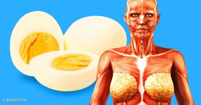 dva-jaja