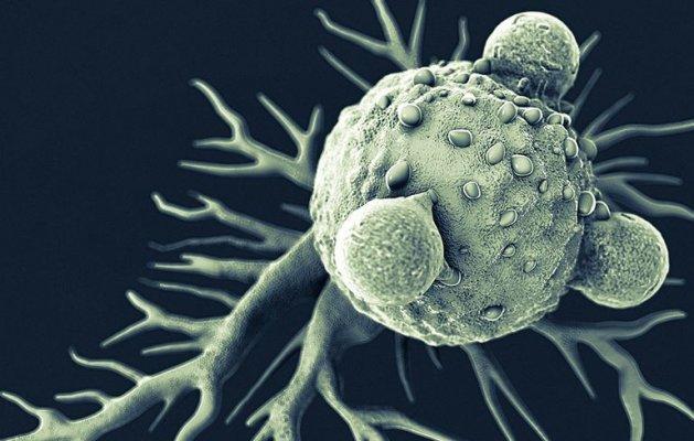 7-cancer-1515513603