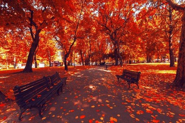 jesen-u-beogradu