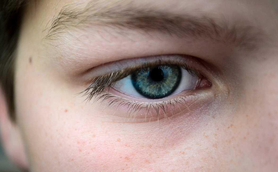 upoznavanje lijevog oka