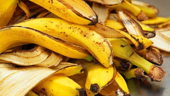 okcasca-banana-1024x576