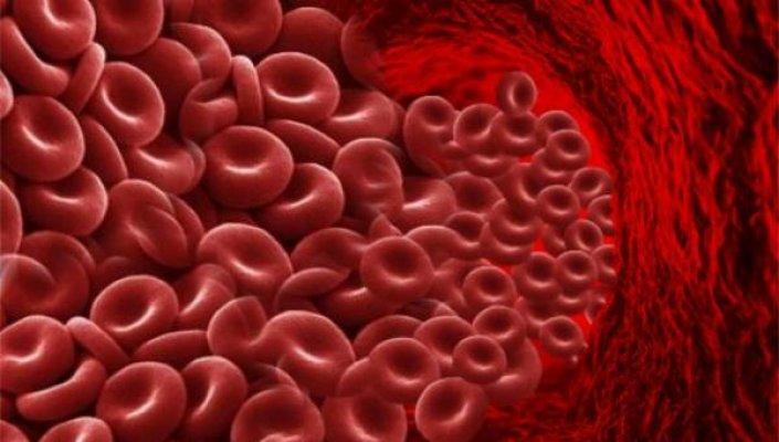 crvena-krvna-zrnca