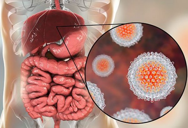 hepatitis-what-puts-you-at-risk-s1-what-is-hepatitis