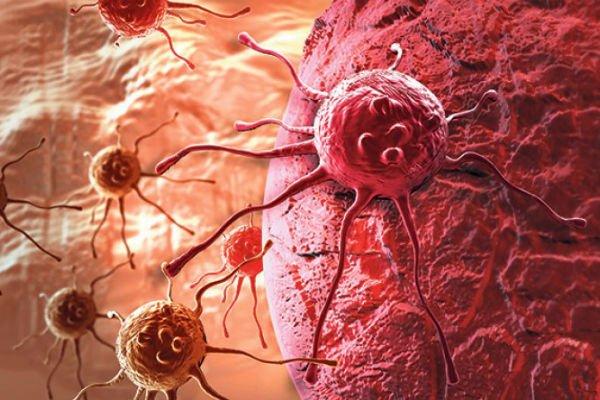 celije-raka