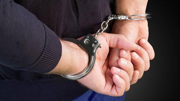 lisice-hapsenje-419914345
