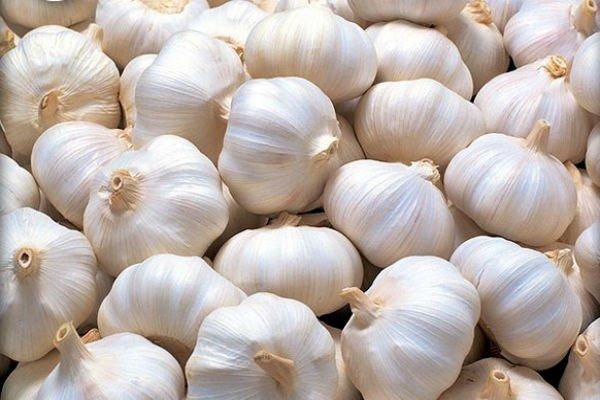 bijeli-luk