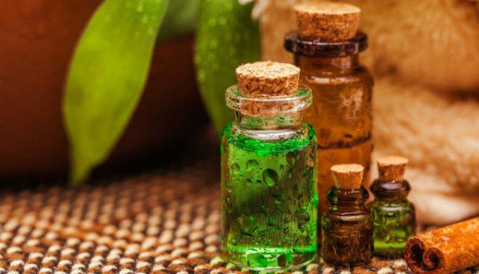 ulje-cajevca