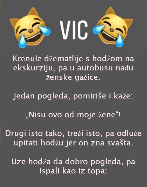 vic-hodza
