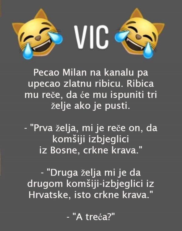 urnek-vic-24