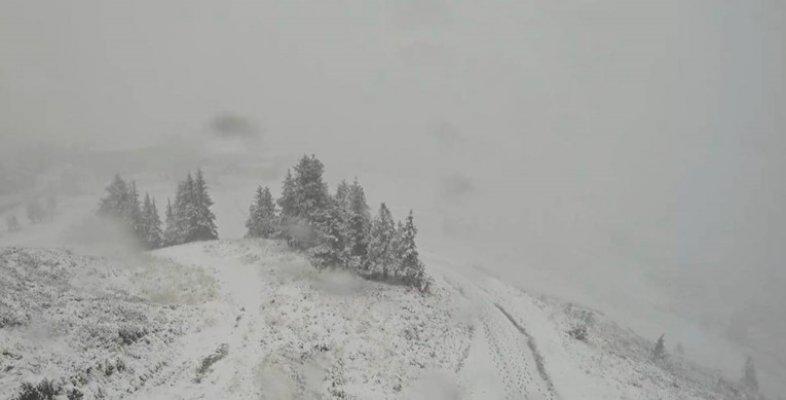 austrija-snijeg