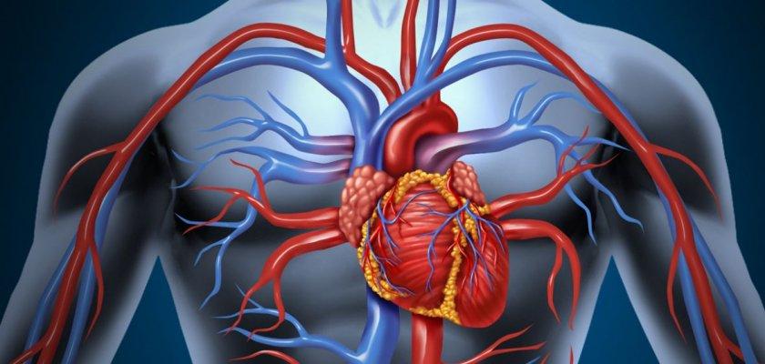 srce-hemofarm