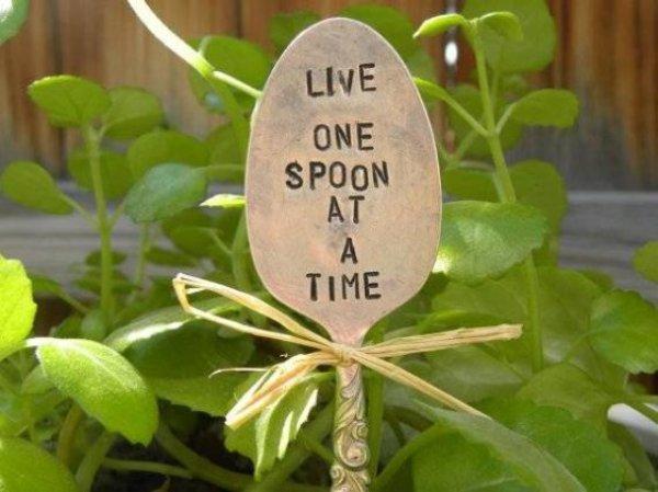 kada-su-biljke-jos-mlade-mozete-koristiti-obelezivace-u-vidu-malih-putokaza-6-561x420